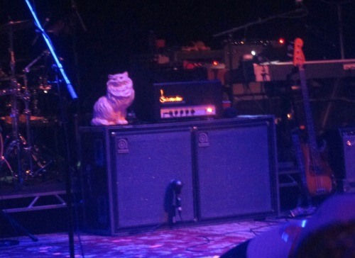 "The ""Star Wars"" cat — or, rather, a reasonable facsimile — awaits the band's arrival onstage Tuesday night at the Capitol Theatre in Port Chester, New York. (© 2016, Steven P. Marsh/willyoumissme.com)"